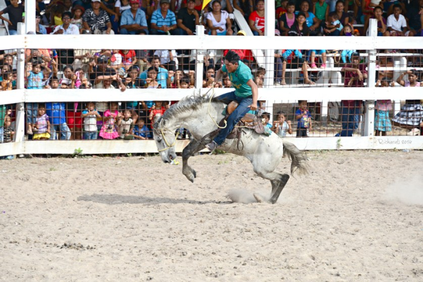 Amanda Richards via Flickr Rupununi Rodeo