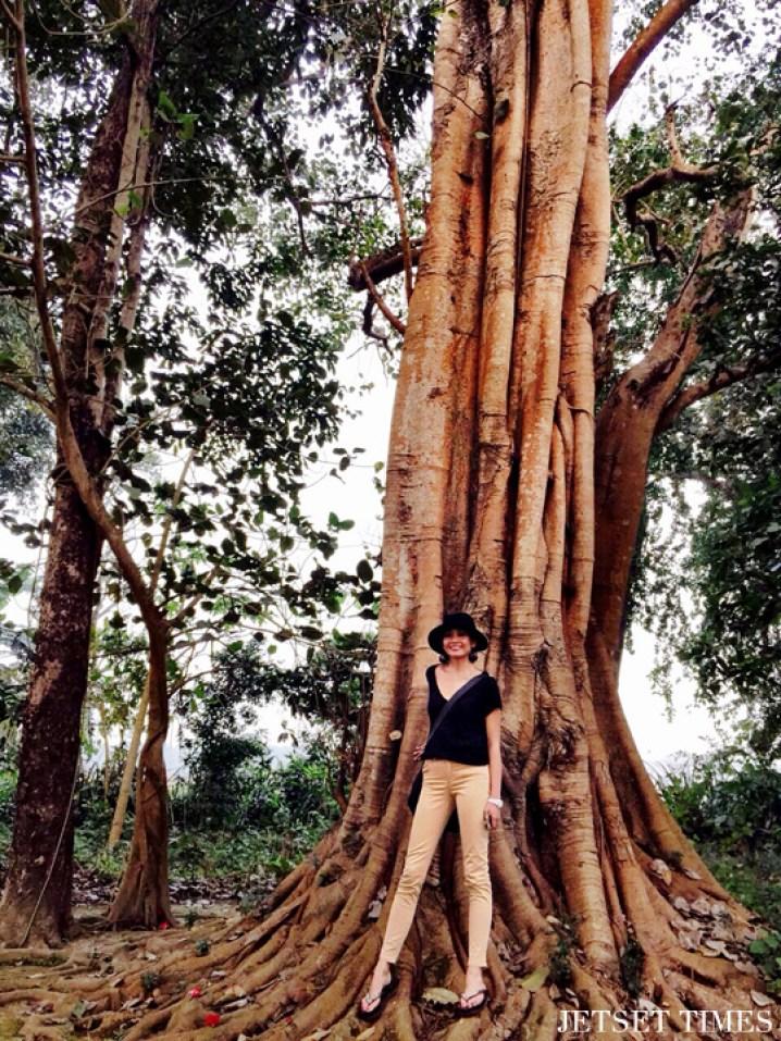 Wendy Chitwan National Park Nepal