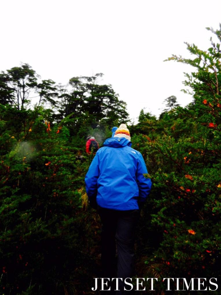 9 Trekking up the hillside Puerto Toro Chile