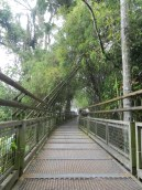 One of many walkways at Iguazú National Park