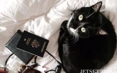 Mister I US passport