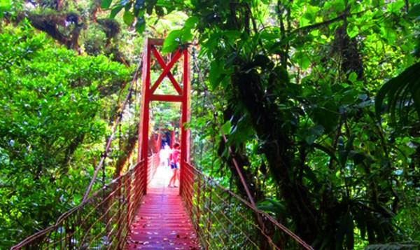 Monteverde, Costa Rica bridge