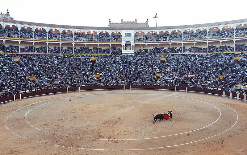 Pixabay Bullfight Turero Corrida Arena
