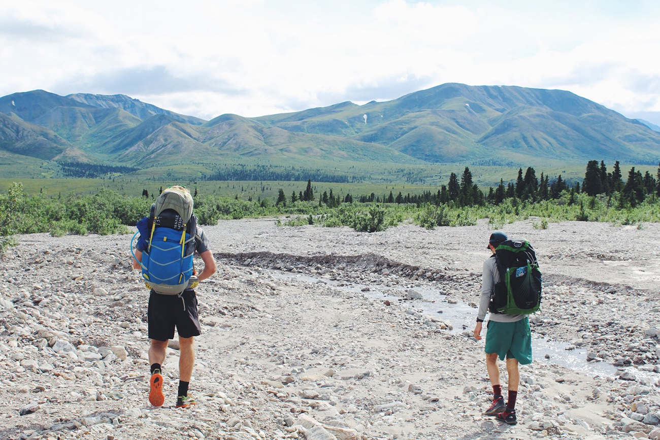 Following the riverbed backpacking in Denali National Park.