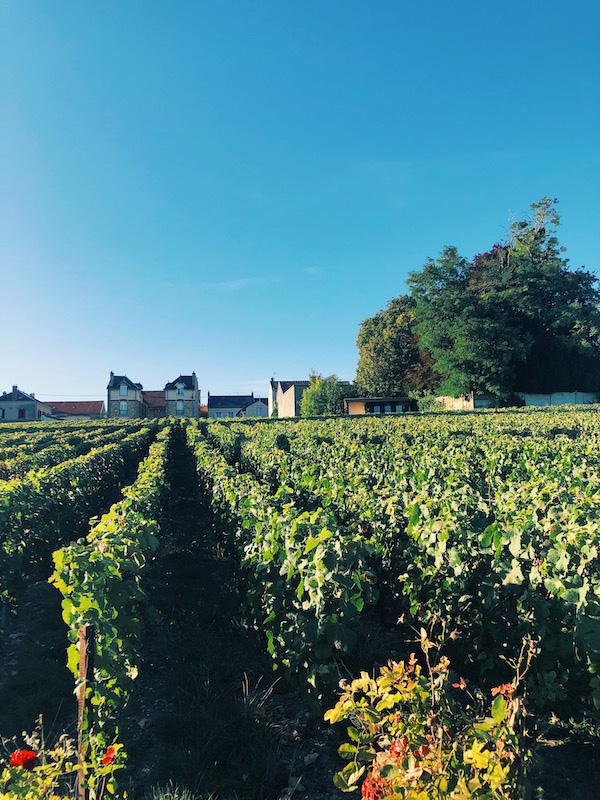 Champagne F.Bergeronneau-Marion