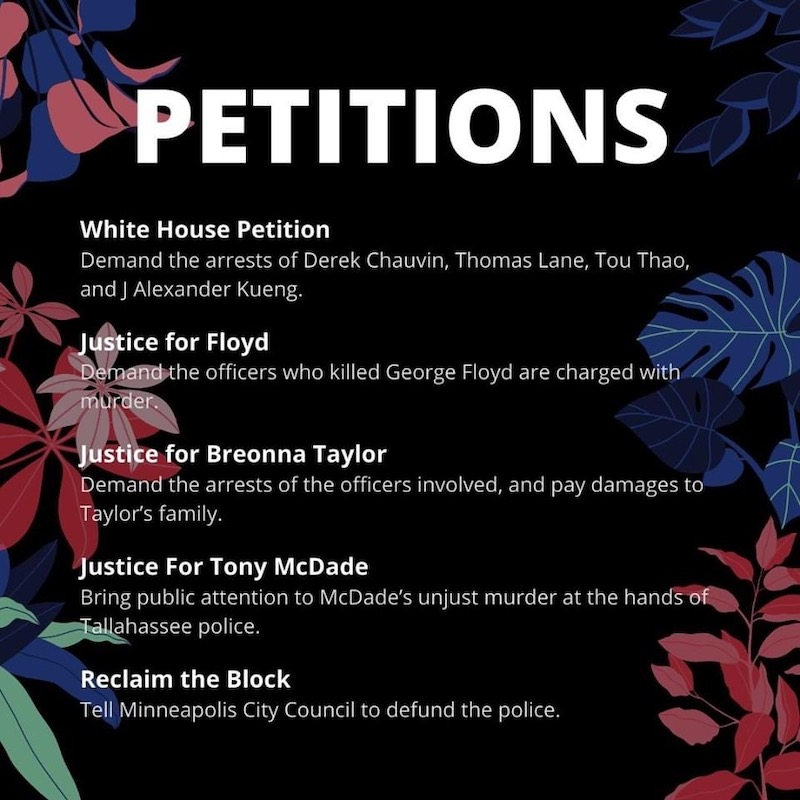 Petitions by: Nick Shereikis