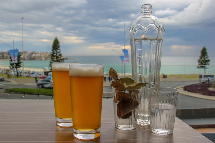 Drinking beers with a view at Vue Bar in Bondi Beach, Sydney, Australia