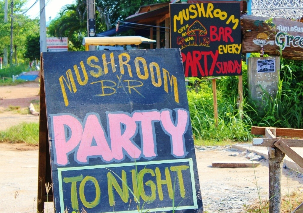 Party sign in Klong Khong Beach, Koh Lanta, Thailand