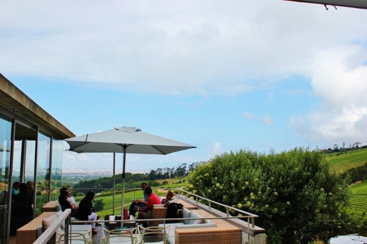 Wine Tasting at Beau Constantia in Cape Town, South Africa