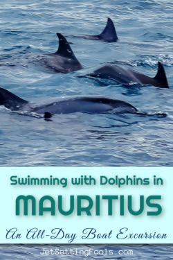 Swimming with Dolphins in Mauritius by JetSettingFools.com