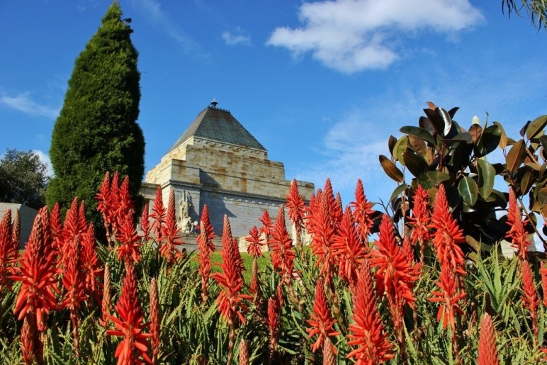 Bright flowers at the Shrine of Remembrance, Melbourne, Australia