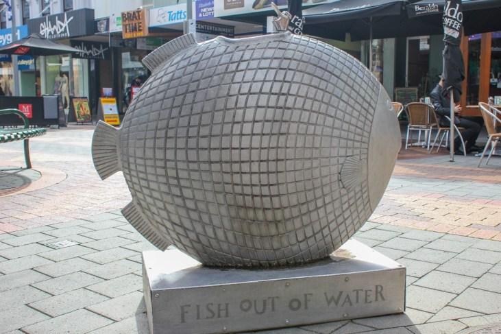 Fish drinking fountain, Hobart, Tasmania, Australia