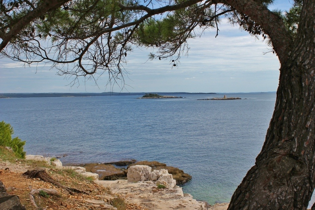 Views from the hiking and biking trails in Rovinj Croatia at Golden Cape Forest Park
