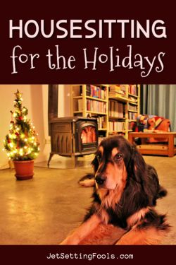 Housesitting Over Christmas by JetSettingFools.com