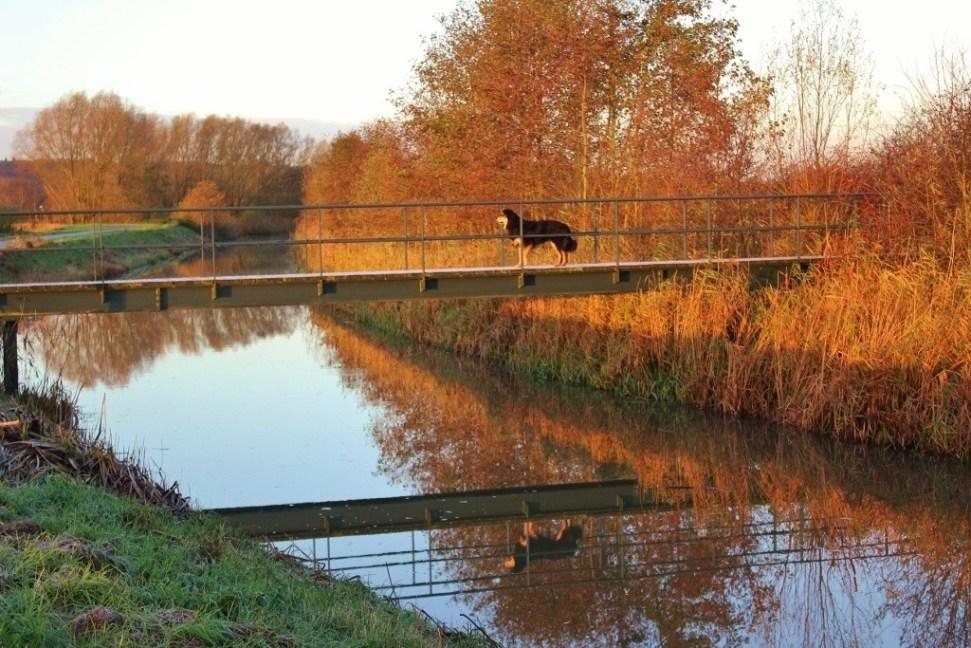 Beek-Ubbergen Netherlands Nature