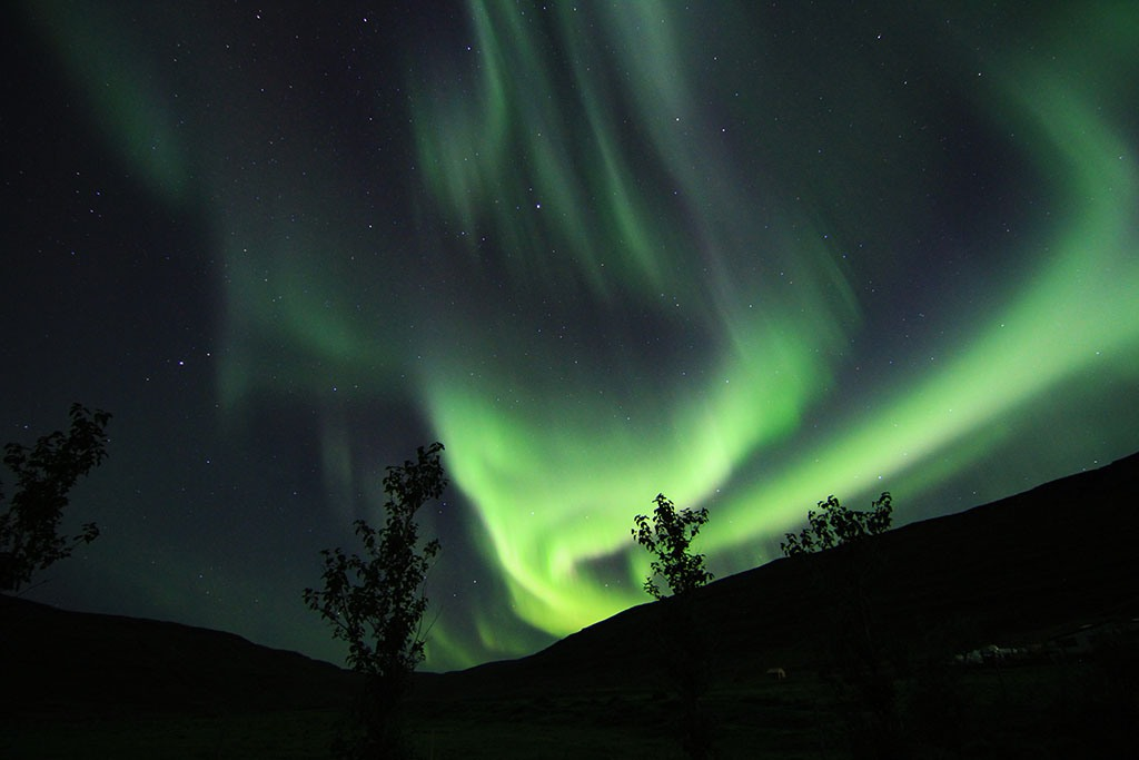 Luxe-Adventure-Traveler-Iceland-Westfjords-Northern-Lights Jennifer Dombrowski luxeadventuretraveler.com Seeing the Northern Lights in Iceland