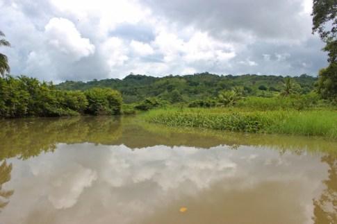 Beautiful nature in Costa Rica