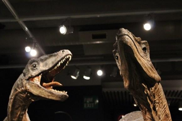 Wellington, New Zealand Dinosaurs at Te Papa Museum JetSettingFools.com