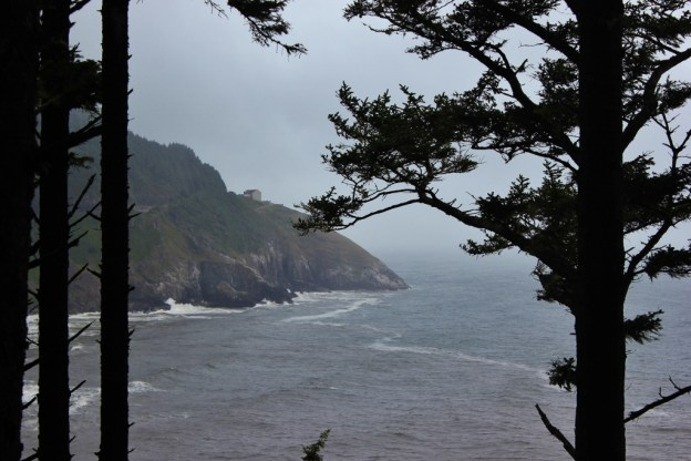 Coastal View from one of the hikes near Florence, Oregon