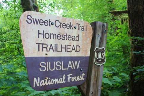 Sweet Creek Trail Homestead Trailhead, a hike near Florence, Oregon