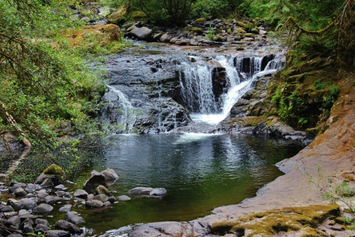 Waterfalls at Sweet Creek Falls, a hike near Florence, Oregon