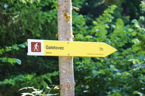 Galetovec Hiking Trail Sign Yellow Trail Marker