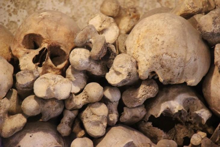 Skull and Skeleton bones, Ossuary, Kranj, Slovenia