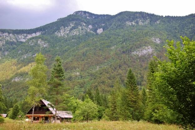 Pasture and mountains in Voje Valley near Lake Bohinj, Slovenia