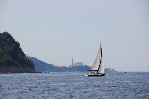 Sailooat passes Piran, Slovenia on water