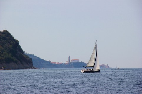 Sailooat passes Piran, Slovenia on water