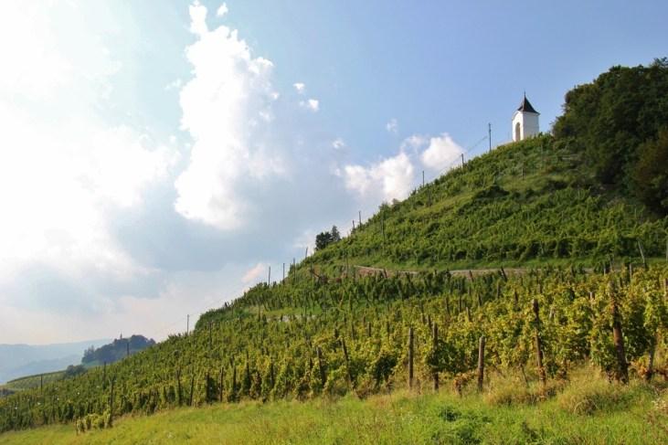 Path through vineyards to Chapel on Pyramid Hill, Piramida, in Maribor, Slovenia