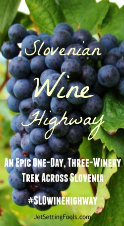 Slovenian Wine Highway Pinterest Pin