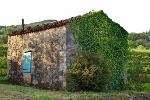 Stone hut in vineyards used by harvest workers at Hisa Vin Rondic