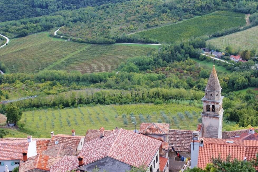 Rooftop and vineyard views from Motovun, Istria, Croatia