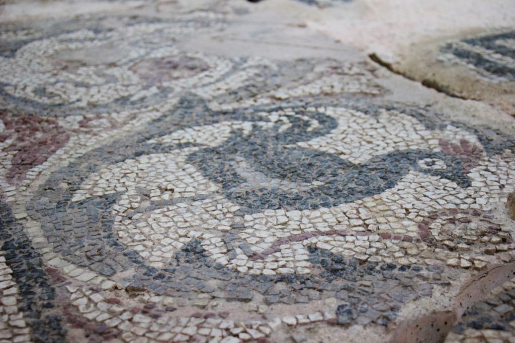 Ancient rooster tiled mosaic at Kosovo Museum in Prishtina, Kosovo
