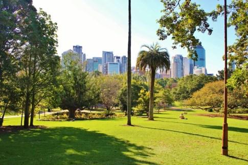 CBD View from City Botanic Gardens in Brisbane, Australia