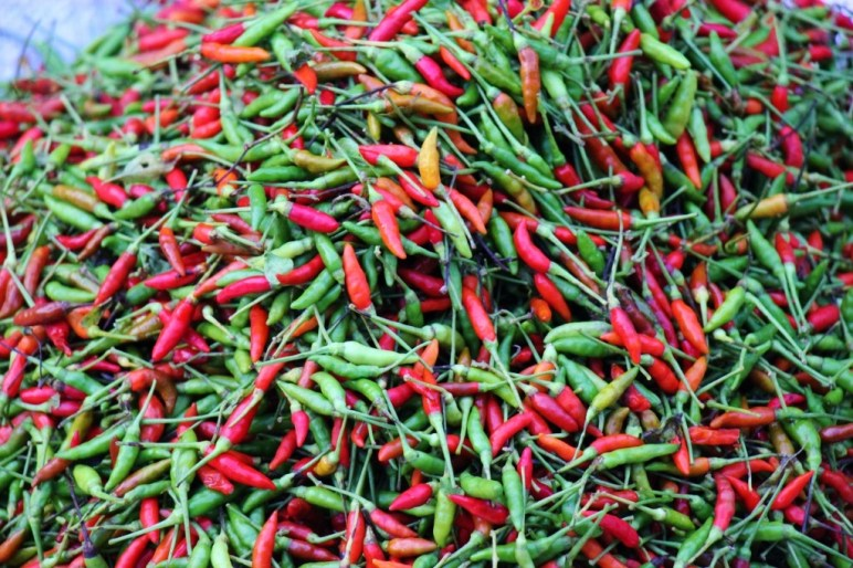Piles of chilis for sale at Morning Market in Luang Prabang, Laos