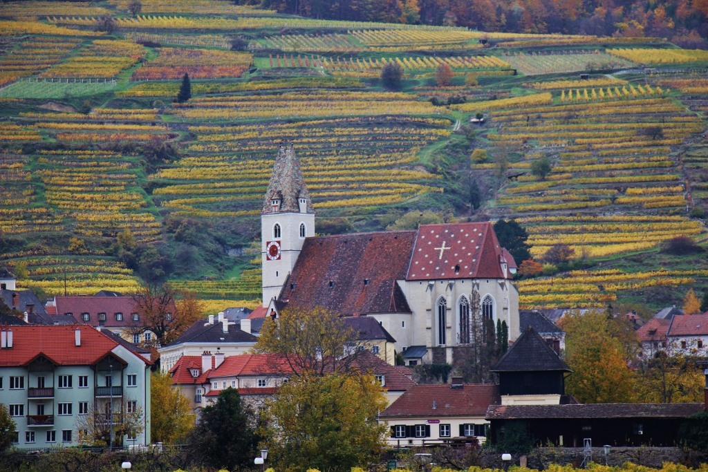 Quaint church and hillside vineyards in Wachau Valley, Austria