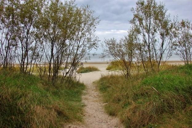 Sandy path to the beach in Jurmala, Latvia