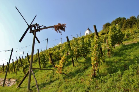 Pyramid Hill vineyards in Maribor, Slovenia