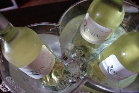 Wine tasting at Hisa Vin Rondic in Vipava Valley, Slovenia