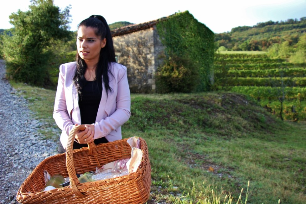 Hisa Vin Rondic vineyard in Vipava Valley, Slovenia