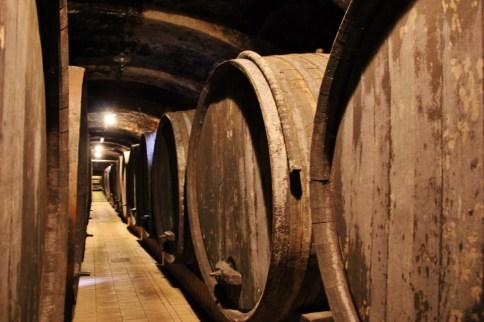 Wine barrels at Vinag Wine Cellar in Maribor, Slovenia