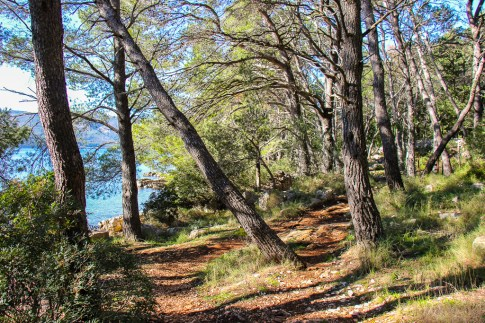 Hiking Trail to beaches on Kabal Peninsula in Stari Grad on Hvar Island, Croatia