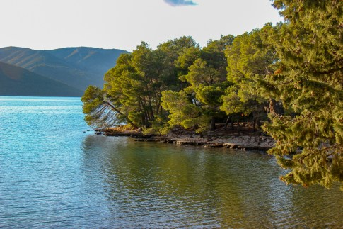 Stari Grad Beach and forest on Hvar Island, Croatia