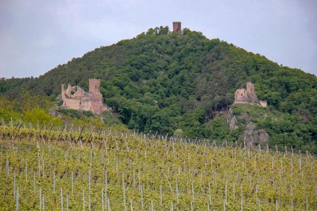 Three hilltop ruins near Ribeauville, France