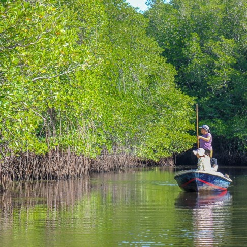 Boatman uses pole to propel canoe in Mangrove Forest on Nusa Lembongan, Bali, Indonesia