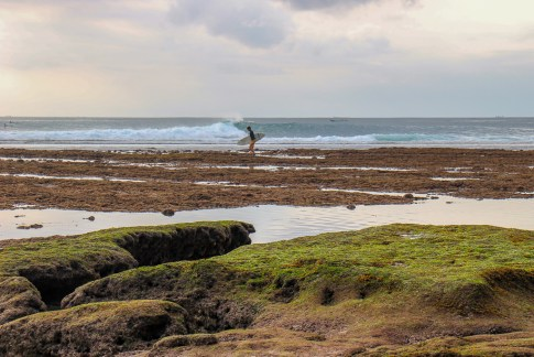 Surfer walks across the reef at Blue Point Beach in Uluwatu, Bali, Indonesia