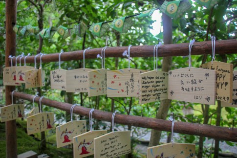 Prayer messages hanging at Gioji Temple in Kyoto, Japan