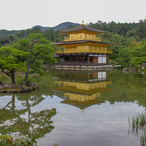 Kinkakuji Golden Temple reflecting on pond in Kyoto, Japan